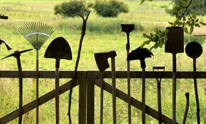 Plantation des vivaces et arbustes