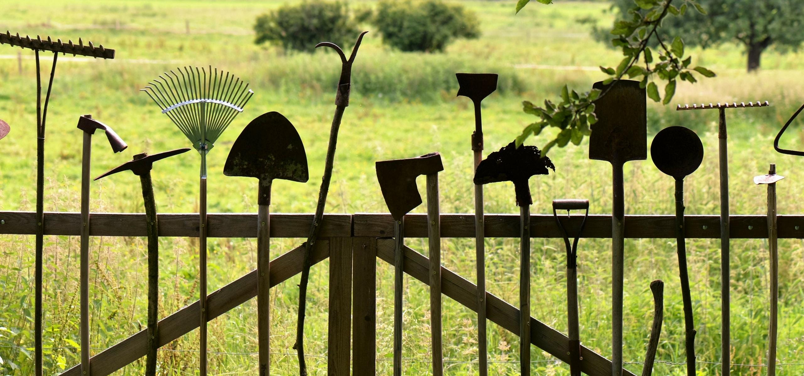 Plantation des vivaces et arbustes blog promesse de fleurs for Conseil plantation jardin