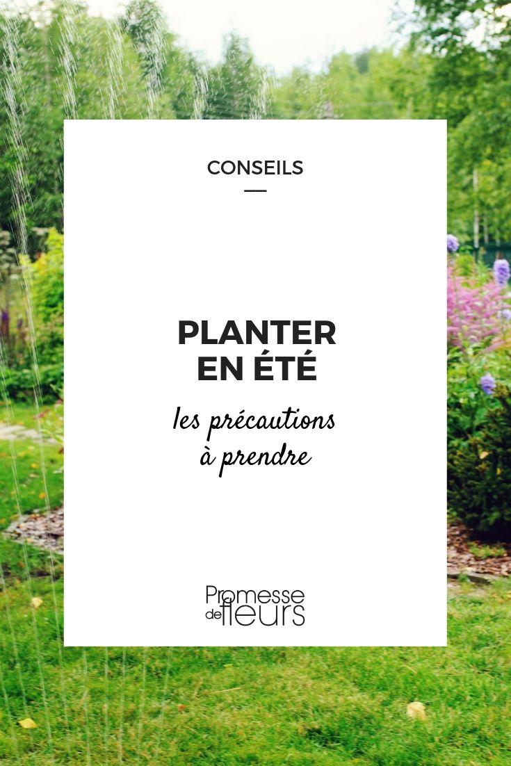Comment Planter Du Muguet comment planter en été - promesse de fleurs