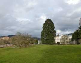 Le jardin Hermannshof en mars