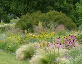 Le jardin Hermannshof en juin