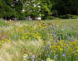 Le jardin Hermannshof en juillet et août