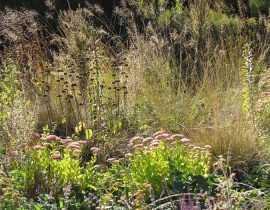 Le jardin Hermannshof en septembre