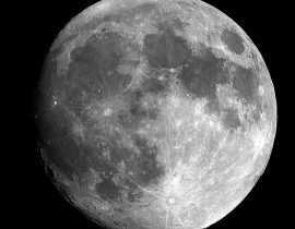 La lune, cette enquiquineuse : jardiner avec la lune (ou pas).