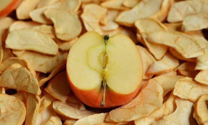 culture, récolte et séchage des baies de goji / blog promesse de
