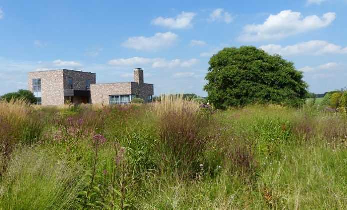 Visite au jardin de Piet Oudolf à Hummelo