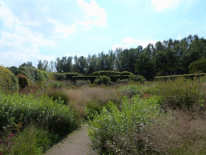 Les haies composées d'essences locales (charmes, aubépines...) et taillées irrégulièrement sur le bord extérieur de la propriété participent à l'intégration paysagère de jardin d'Hummelo