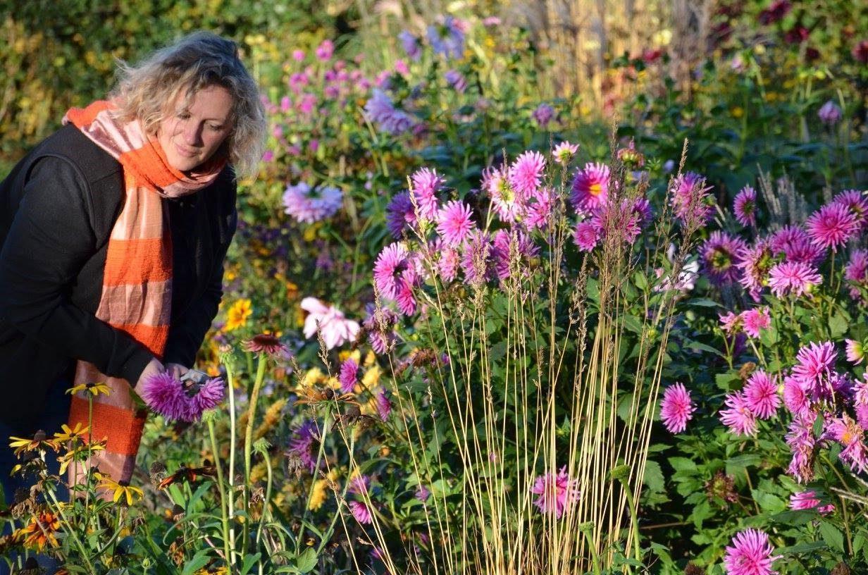 """Bientôt, """"Entrez, c'est tout vert"""" ! Sophie Arendt nous parle de son jardin"""