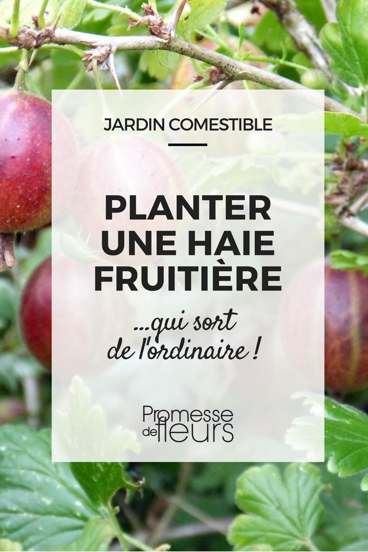 Haie fruiti re plantez la avec des arbres et arbustes originaux - Haie de jardin qui pousse vite ...