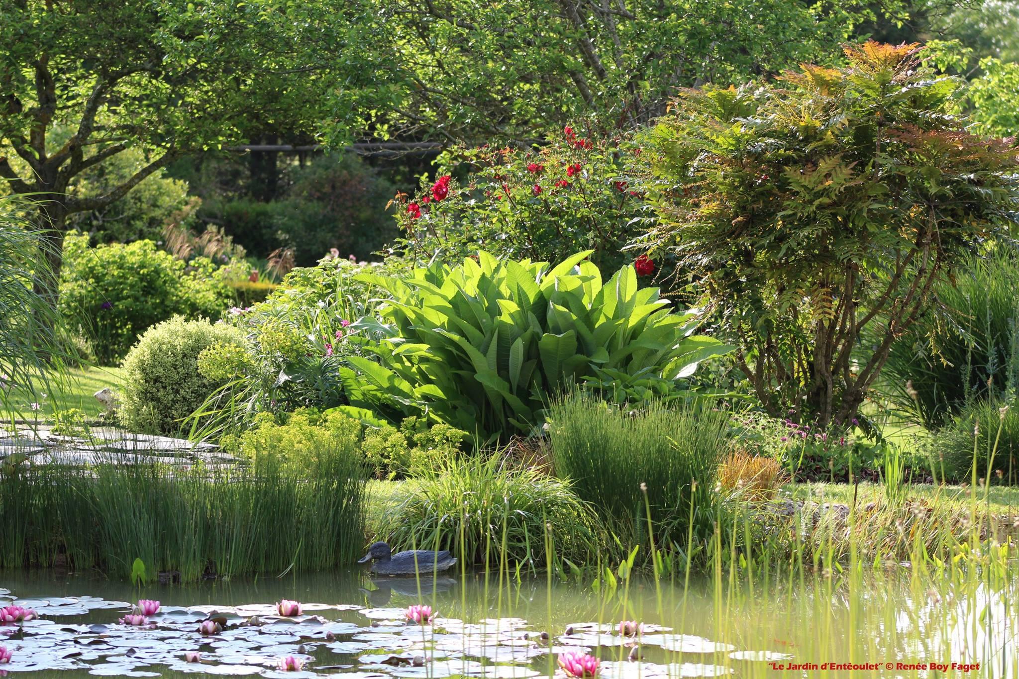 le jardin denteoulet renee boy faget blog promesse de fleurs. Black Bedroom Furniture Sets. Home Design Ideas