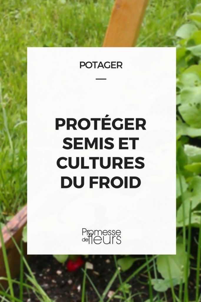 Potager : protéger semis et cultures du froid