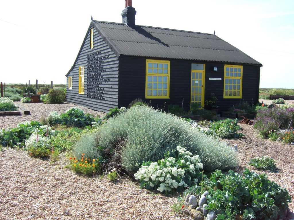 jardin sans entretien : conseils, astuces et plantes adaptées - blog