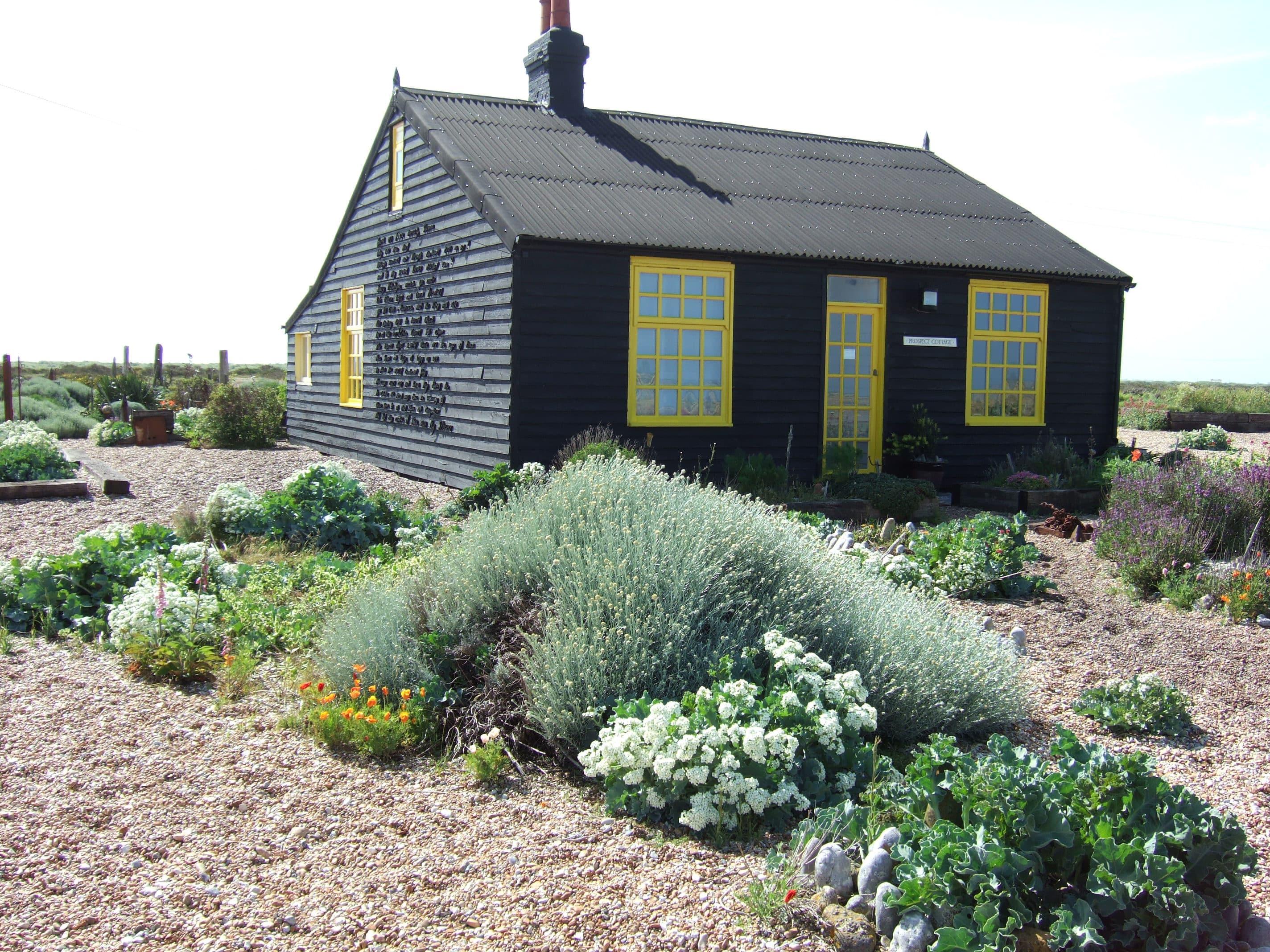 Fabuleux jardin sans entretien : conseils, astuces et plantes adaptées DM08