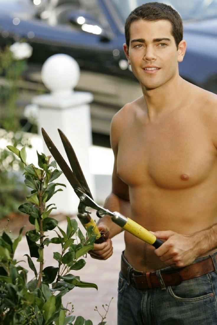 Jardin sans entretien toutes les solutions de nos experts for Conseil de jardinier