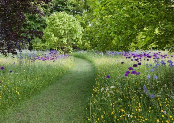 Jardin sans entretien conseils astuces et plantes adapt es for Petit jardin sans entretien