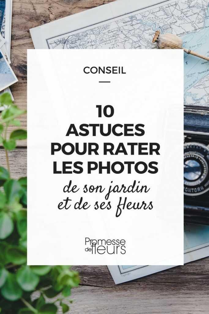 10 astuces pour rater les photos de son jardin et de ses fleurs