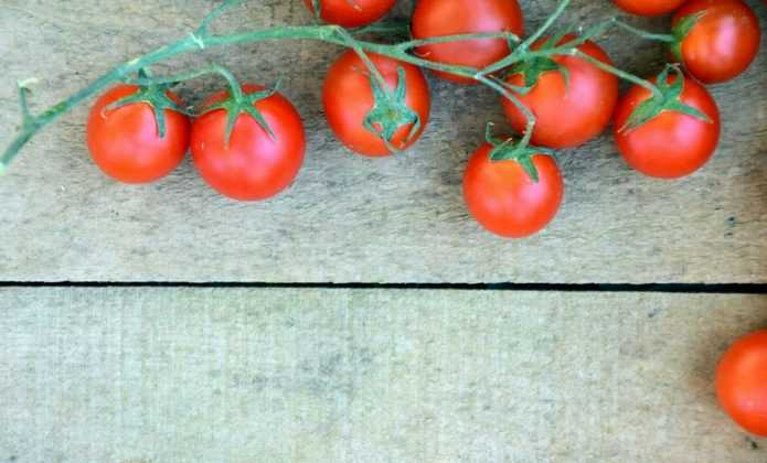 tuteurer les tomates blog promesse de fleurs. Black Bedroom Furniture Sets. Home Design Ideas