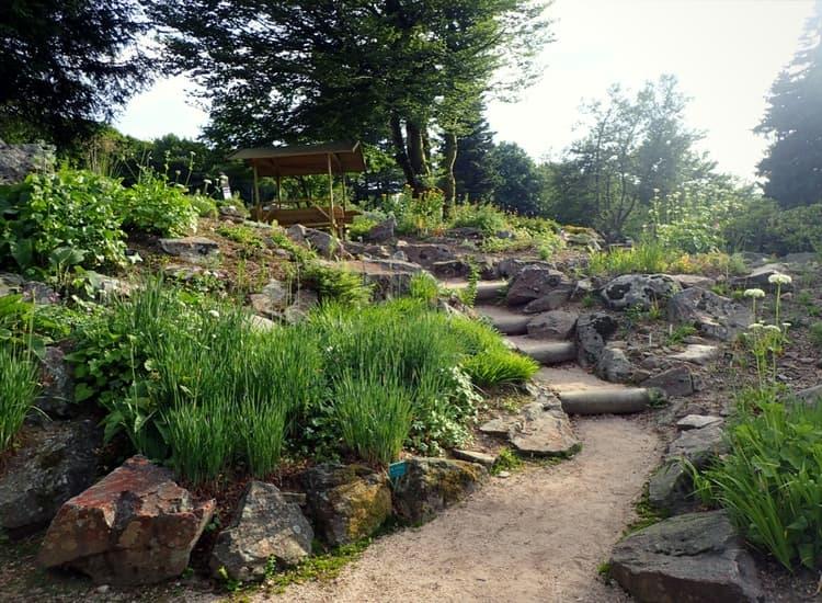 Blog jardinage blog plantes vivaces blog potager jardin for Pro du jardin