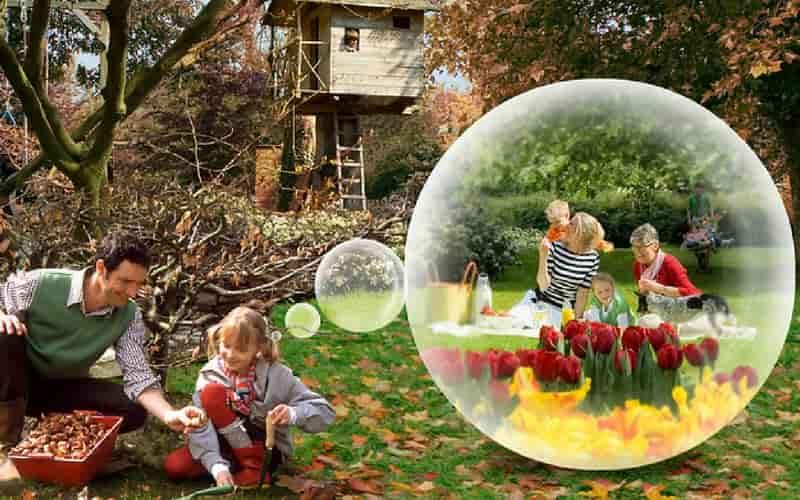 Comment rater ses tulipes en 5 le ons nos conseils - Planter des tulipes en mars ...