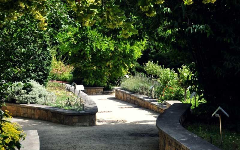 Le jardin botanique de gen ve for Jardin botanique geneve