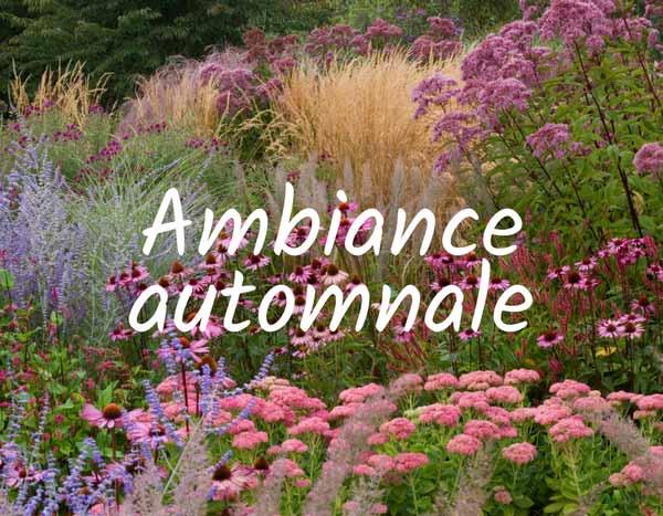 """Résultat de recherche d'images pour """"jardin romantique automnale"""""""