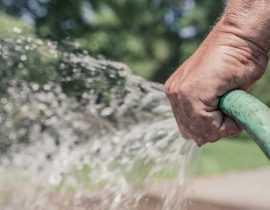 Restriction d'eau et arrosage, comment gérer la crise au jardin ?