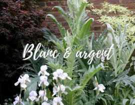 Le jardin blanc argenté, l'élégance chic !