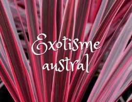 Exotisme Austral