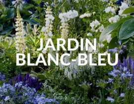 Jardin blanc bleu