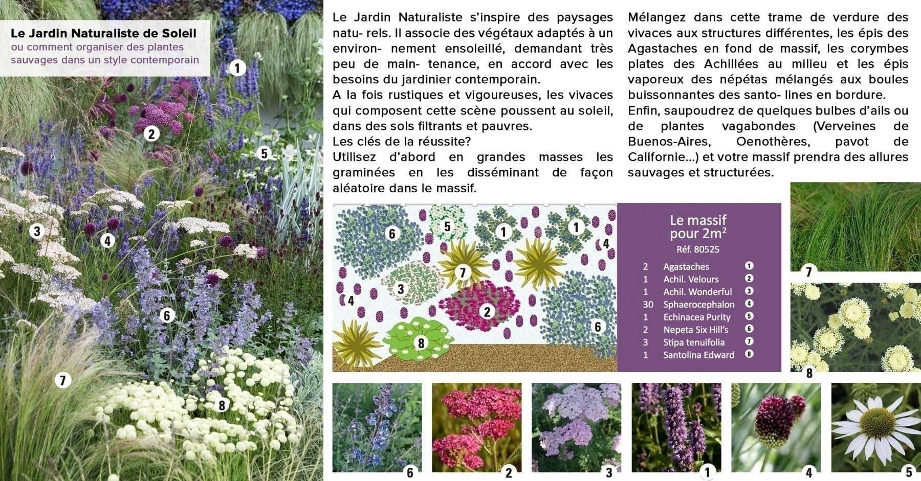 jardin naturaliste de soleil blog promesse de fleurs. Black Bedroom Furniture Sets. Home Design Ideas