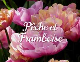 Inspiration Pêche Framboise