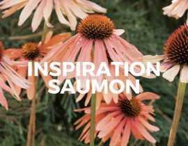 Inspiration Saumon