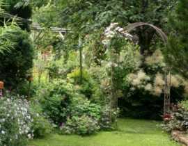 """""""Sainte Anne"""", le jardin naturel de Virginie : un paradis dans les Ardennes"""