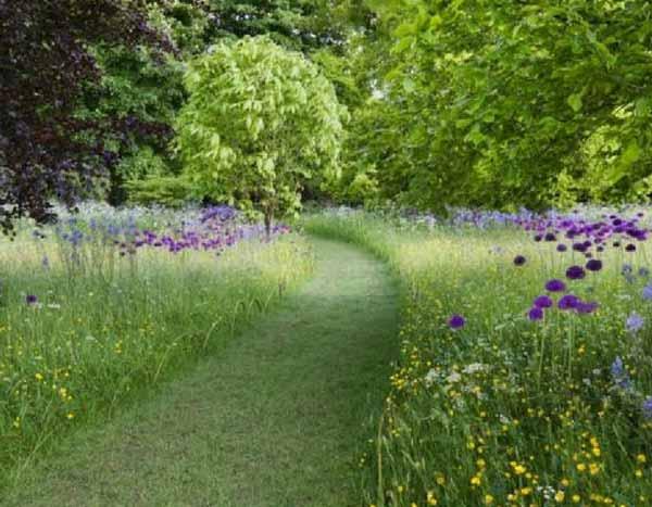 Jardin sans entretien conseils astuces et plantes adapt es for Conseil entretien jardin