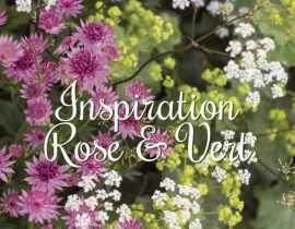 Inspiration Rose Vert