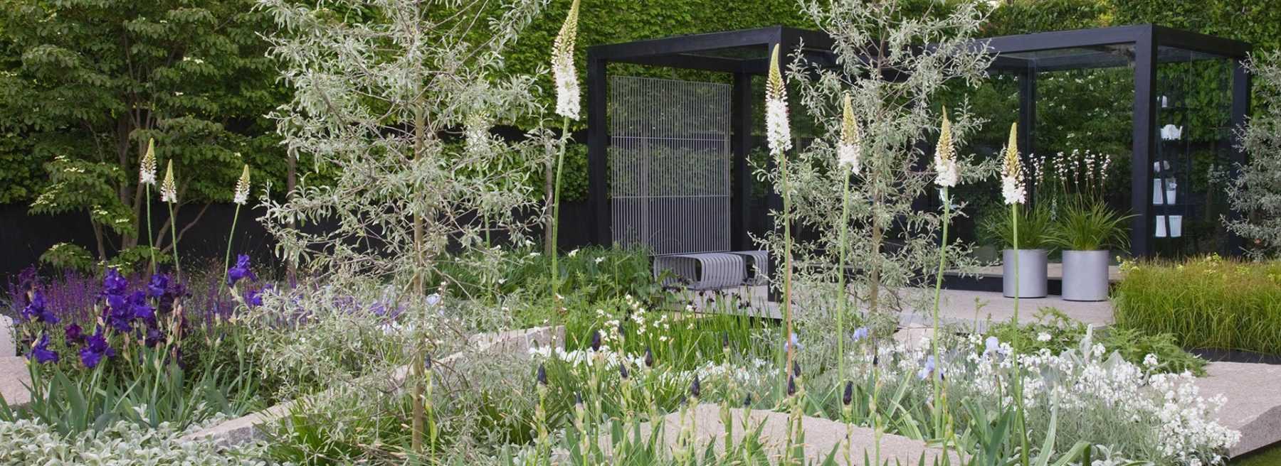 Scène de jardin contemporain / Blog Promesse de fleurs