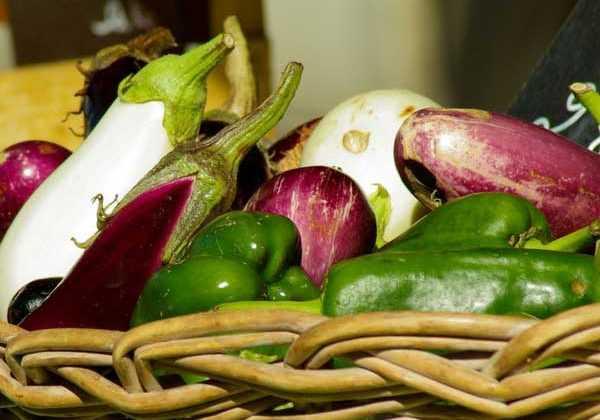 R ussir la culture des piments et poivrons blog promesse for Entretien poivron jardin