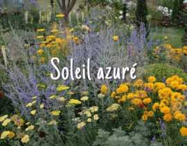Soleil Azuré
