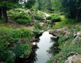 Le jardin d'altitude du Haut Chitelet