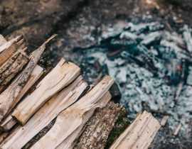 Cendre de bois : comment l'utiliser au jardin ?