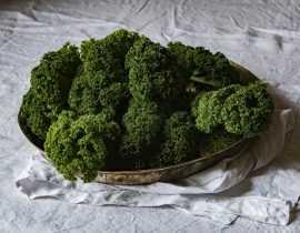 7 super aliments, à cultiver dans son jardin