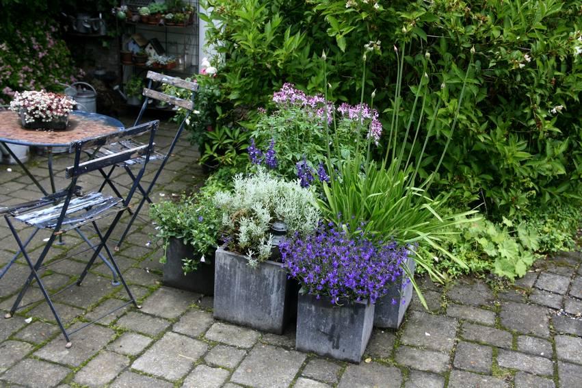 l 39 am nagement d 39 un petit jardin id es solutions et conseils promesse de fleurs. Black Bedroom Furniture Sets. Home Design Ideas