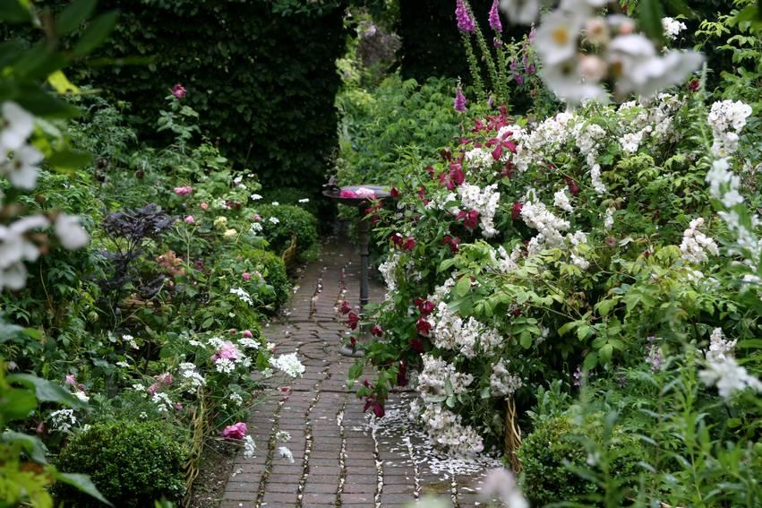 fractionner le jardin donne limpression dun espace plus important tout en apportant multipliant les centres dintrt le jardin des airelles