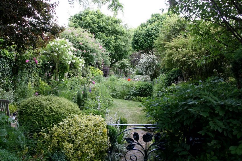 L 39 am nagement d 39 un petit jardin id es solutions et for Arbuste de jardin