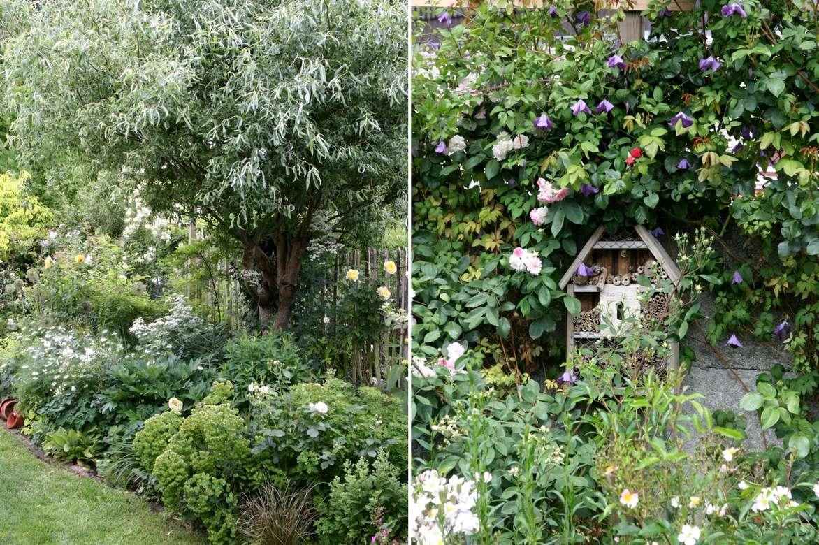 L 39 am nagement d 39 un petit jardin id es solutions et for Calendrier plantation jardin