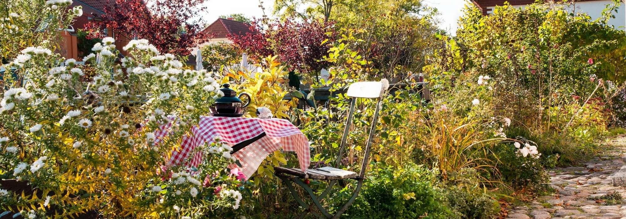 L\'aménagement d\'un petit jardin - Idées, solutions et conseils