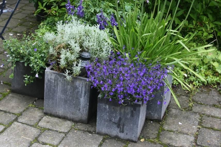 L Amenagement D Un Petit Jardin Idees Solutions Et Conseils