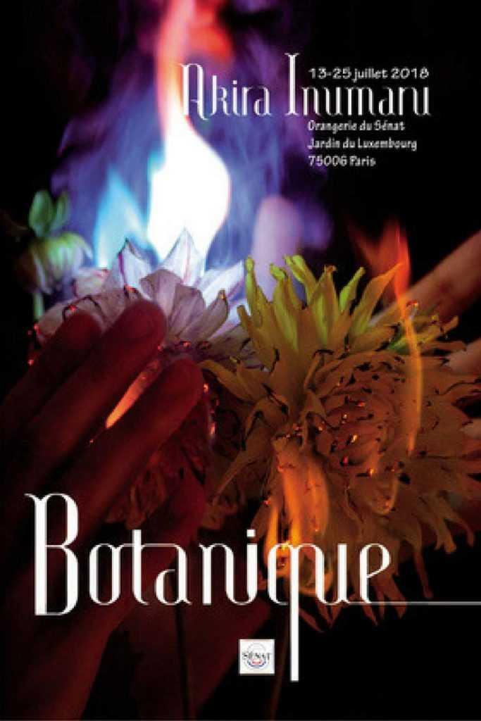 Affiche Botanique - Akira Inumaru