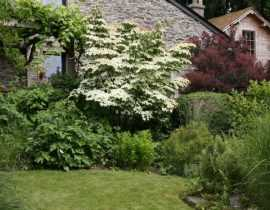 """""""Le Bouillon Blanc"""", un jardin riche et poétique à Sensenruth (Belgique)"""