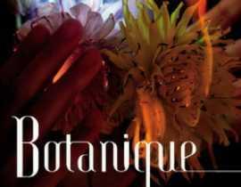 Exposition Botanique - Akira Inumaru à l'Orangerie du Sénat